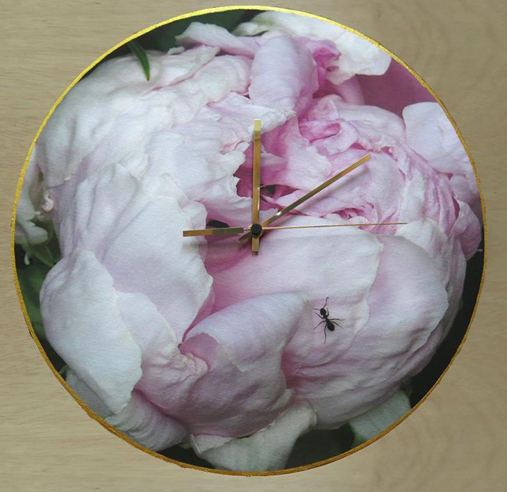 Reloj peonía hormiga |Fotografía de Carmen Varela | Compra arte en Flecha.es