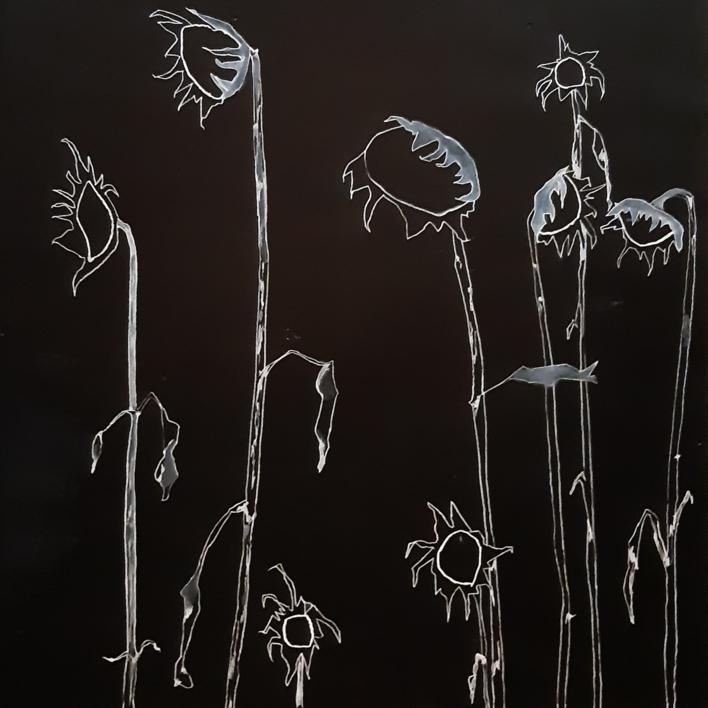 Girasoles |Dibujo de Antonio  Vázquez-Martín | Compra arte en Flecha.es