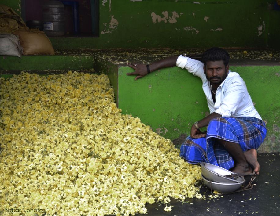 Flower seller in Madurai |Fotografía de Yabar | Compra arte en Flecha.es