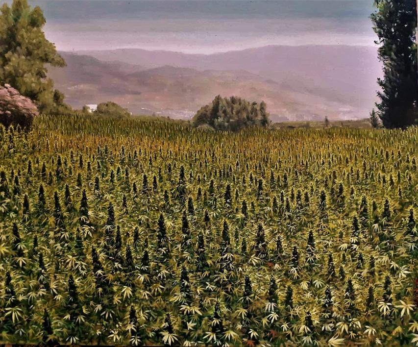 Campo de Kif, Shauen (Marruecos) |Pintura de Fran Jiménez  (Âli Qasim) | Compra arte en Flecha.es