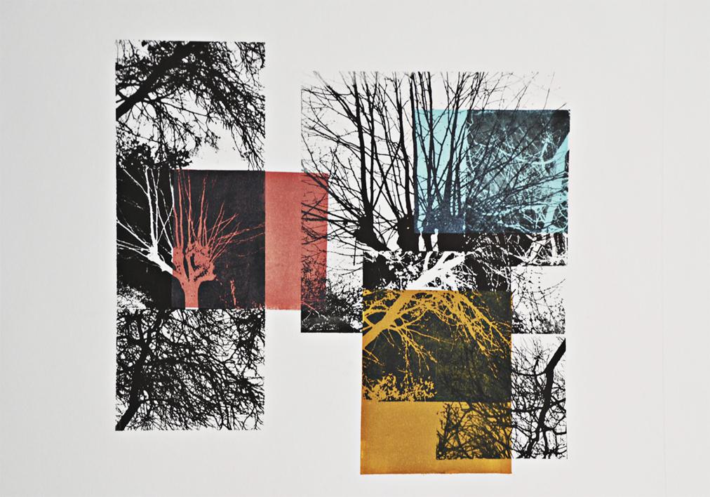 El bosque translúcido 1  Obra gráfica de Josep Pérez González   Compra arte en Flecha.es