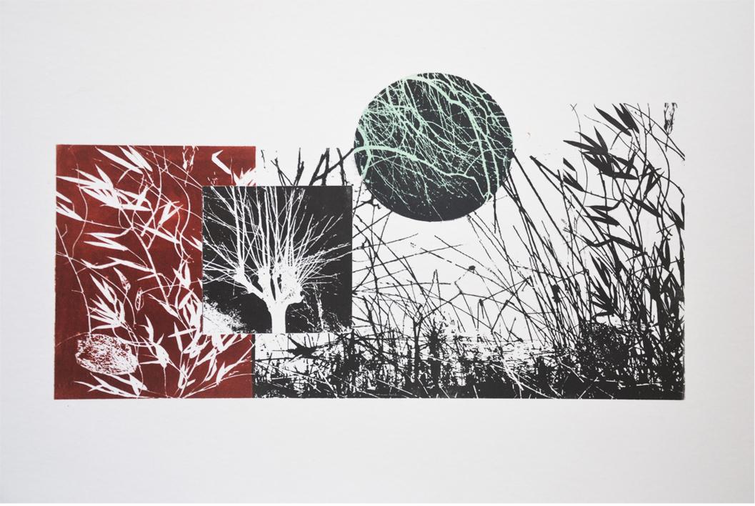 El bosque translúcido 24 |Obra gráfica de Josep Pérez González | Compra arte en Flecha.es