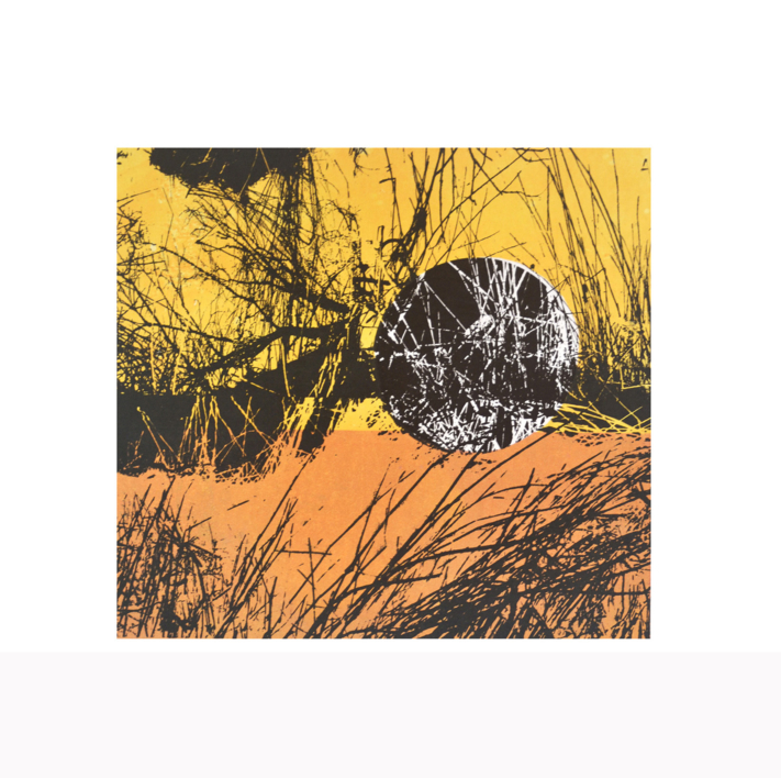 El bosque translúcido  28.3 |Obra gráfica de Josep Pérez González | Compra arte en Flecha.es