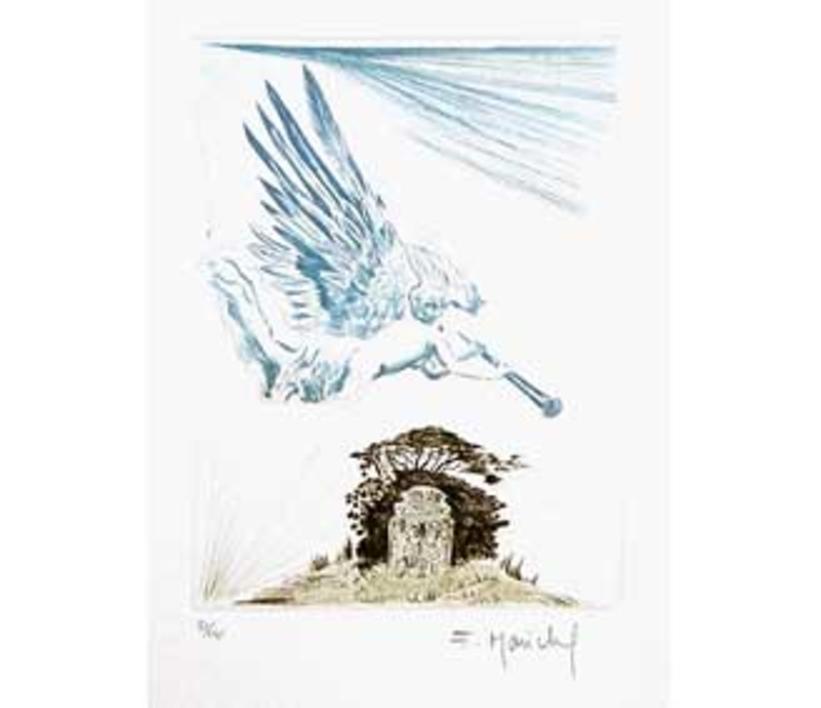 El Testamento de Don Quijote (II) |Dibujo de François Marechal | Compra arte en Flecha.es