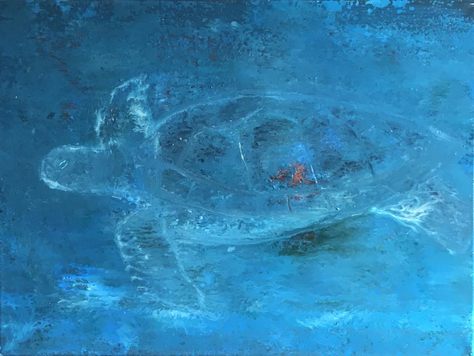 Tortuga marina |Pintura de Enric Correa | Compra arte en Flecha.es