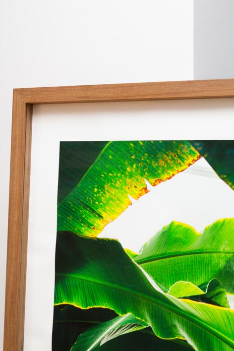 Subtropical II | Digital de Daniel Comeche | Compra arte en Flecha.es