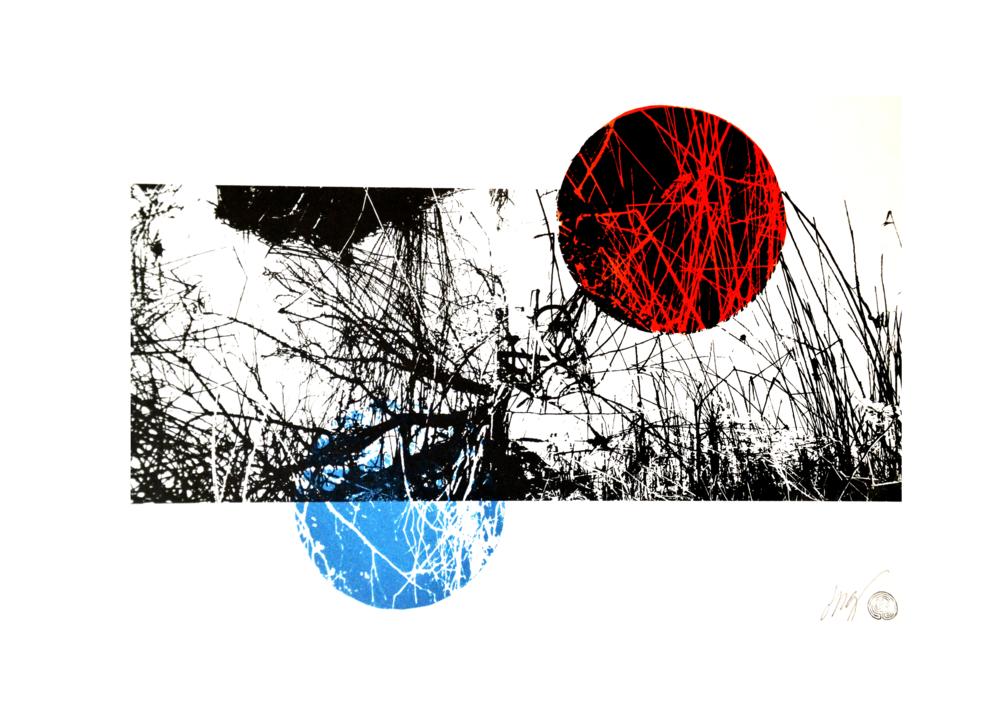 El bosque translúcido 17 V/E II |Obra gráfica de Josep Pérez González | Compra arte en Flecha.es