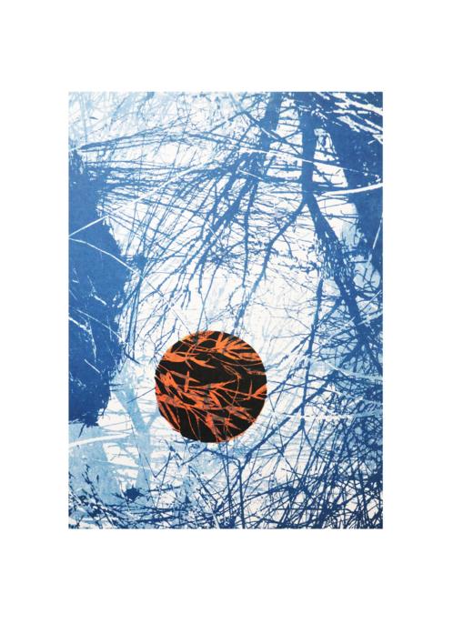 El bosque translúcido 23 V/E II  Obra gráfica de Josep Pérez González   Compra arte en Flecha.es