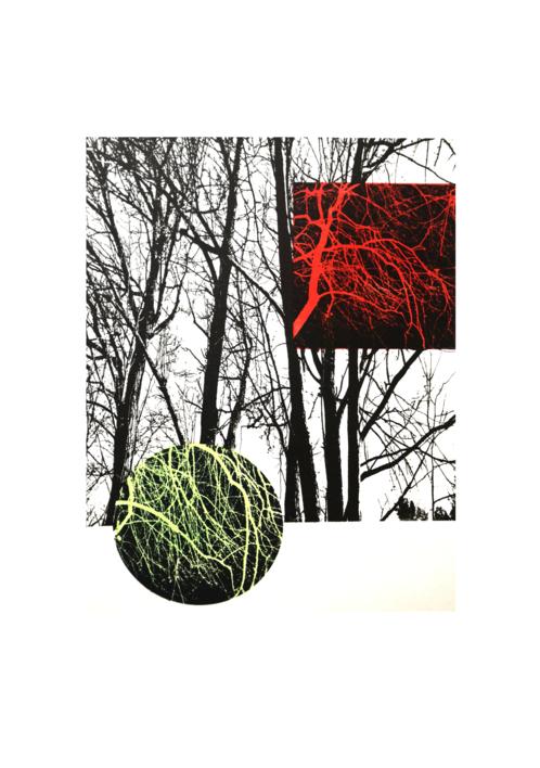El bosque translúcido 29 V/E II |Obra gráfica de Josep Pérez González | Compra arte en Flecha.es