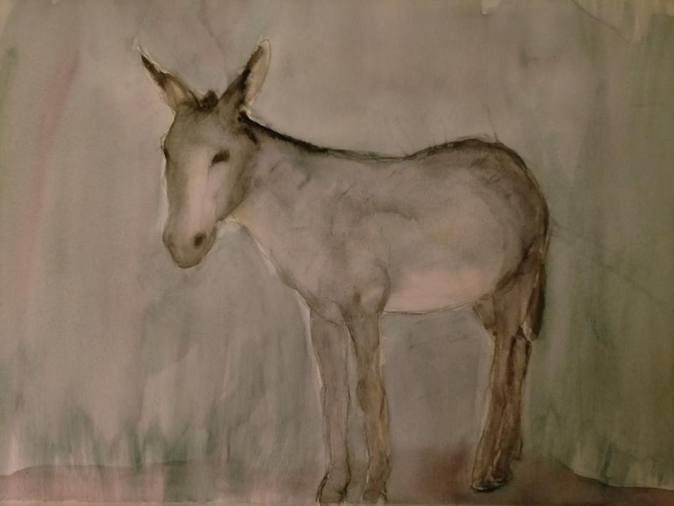 Burro 4 |Dibujo de OliverPlehn-Artist | Compra arte en Flecha.es