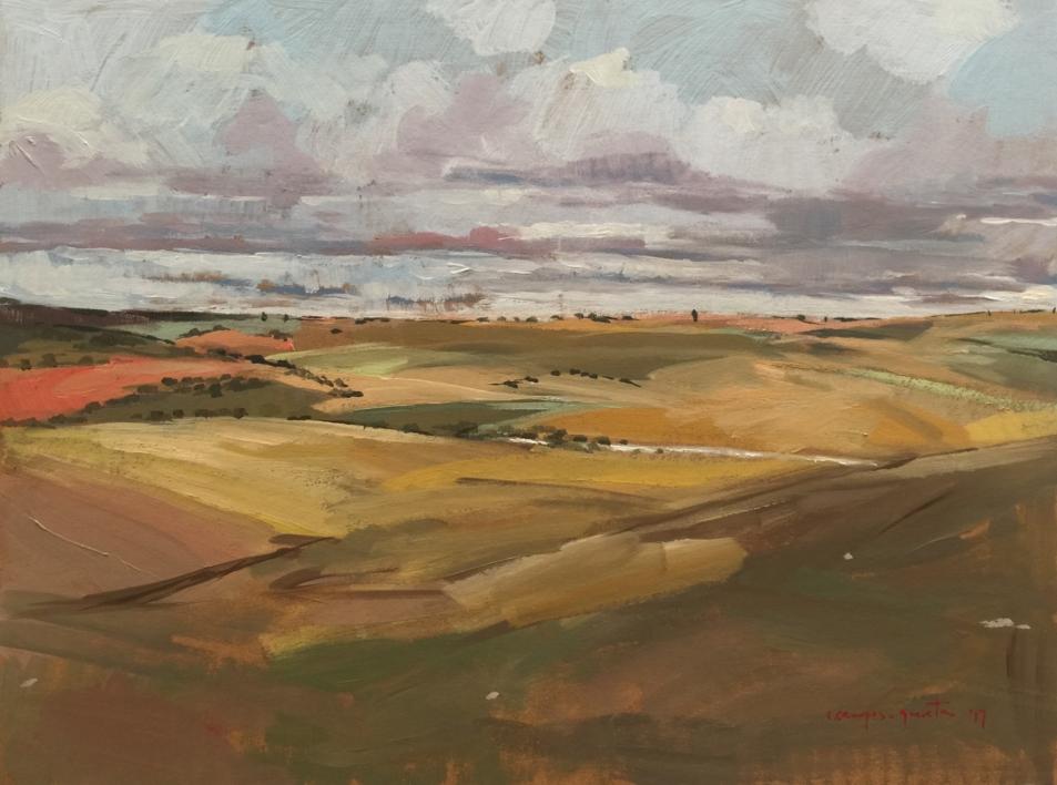 Tierras |Pintura de Carmen Campos-Guereta | Compra arte en Flecha.es