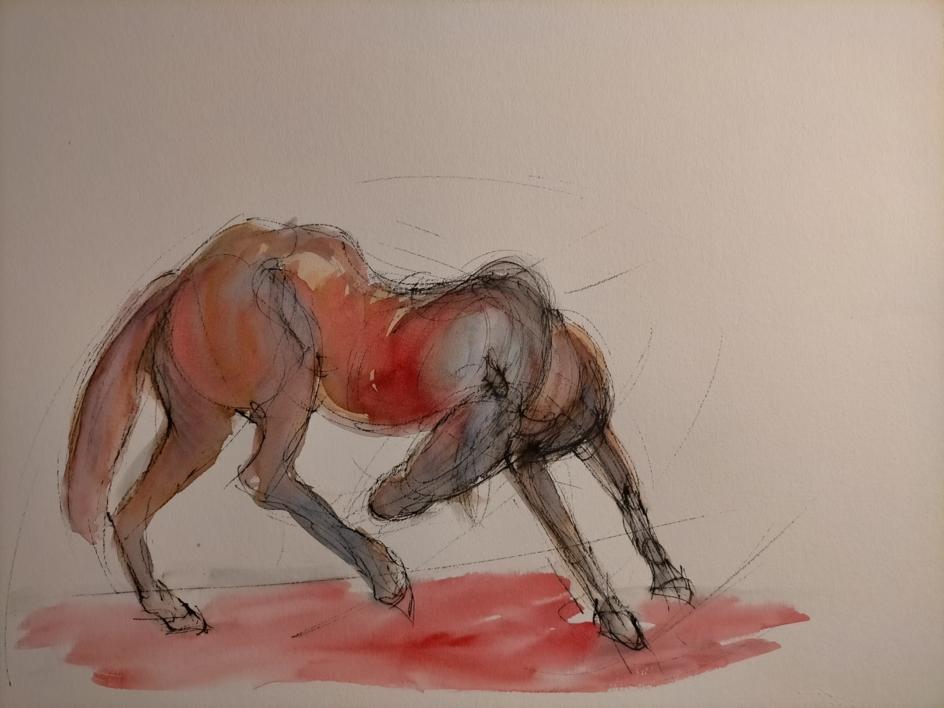 Caballo |Dibujo de OliverPlehn-Artist | Compra arte en Flecha.es