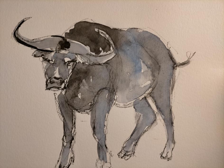 Bull 7 |Dibujo de OliverPlehn-Artist | Compra arte en Flecha.es