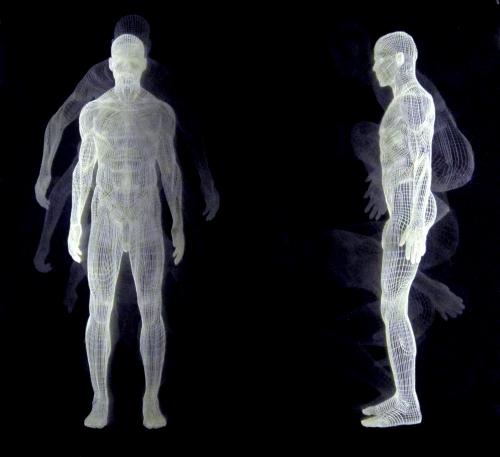 Muybridge  - Salto II |Dibujo de David Ortega | Compra arte en Flecha.es