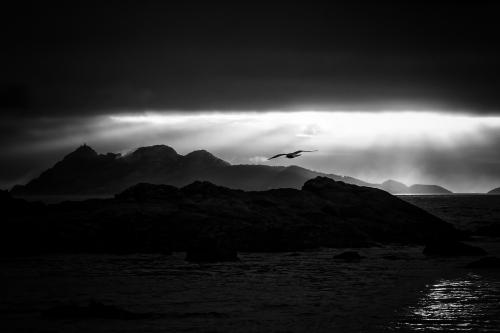 Persigue tus Sueños |Fotografía de Iñigo Echenique | Compra arte en Flecha.es