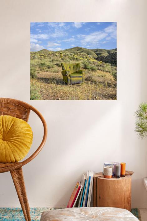 Primavera en el desierto | Fotografía de Leticia Felgueroso | Compra arte en Flecha.es