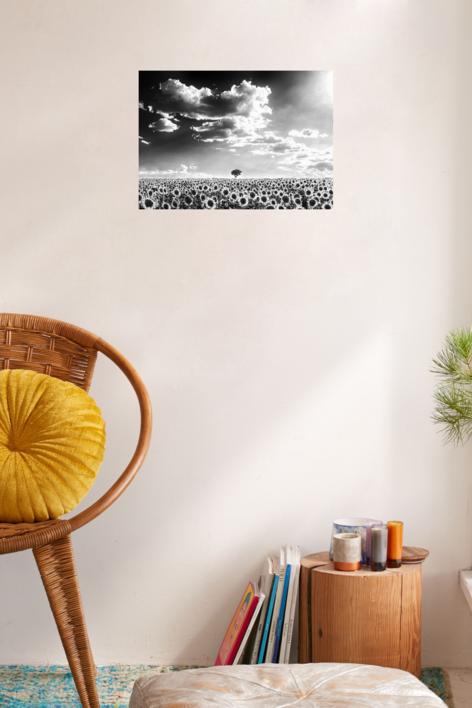 La Soledad | Fotografía de Iñigo Echenique | Compra arte en Flecha.es