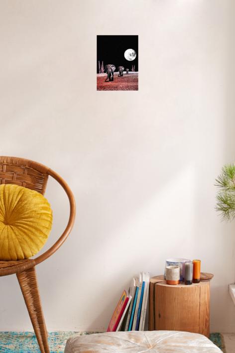 The  Elephants | Collage de Jaume Serra Cantallops | Compra arte en Flecha.es