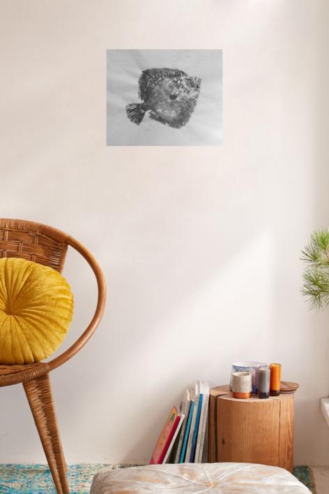 Rodaballo | Obra gráfica de Antonio Valverde | Compra arte en Flecha.es