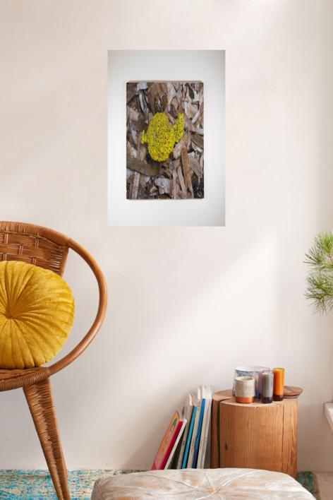 Algues 18 | Digital de Salvador Llinàs | Compra arte en Flecha.es
