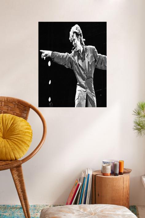 David Bowie en Concierto | Fotografía de Domingo J. Casas | Compra arte en Flecha.es