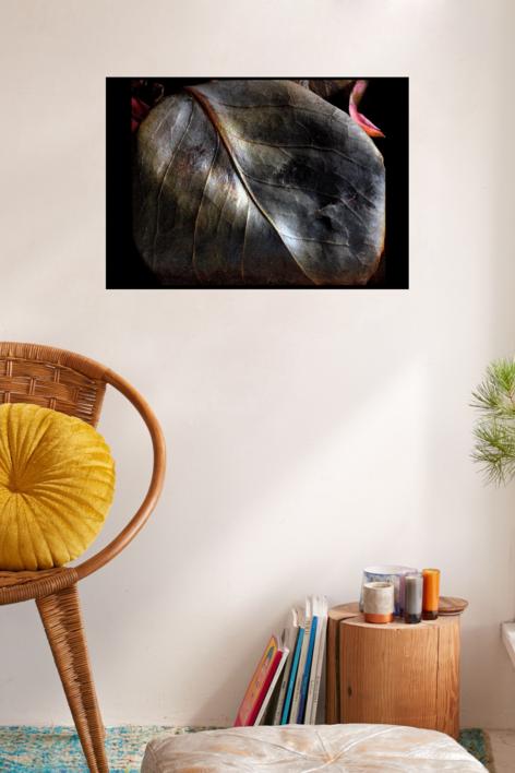 Hoja | Digital de Juan de la Sota | Compra arte en Flecha.es