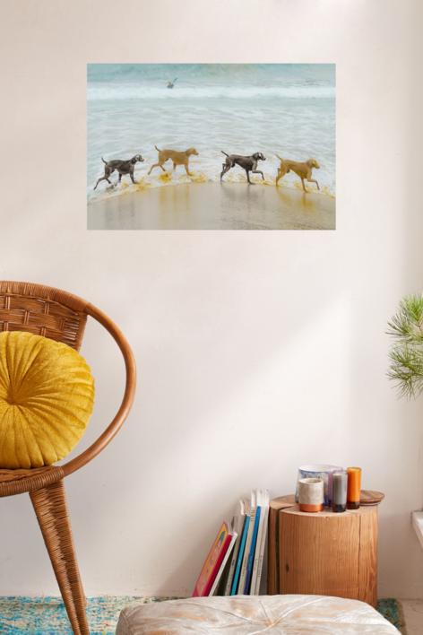 El círculo del paraíso | Digital de Xisco Fuster | Compra arte en Flecha.es
