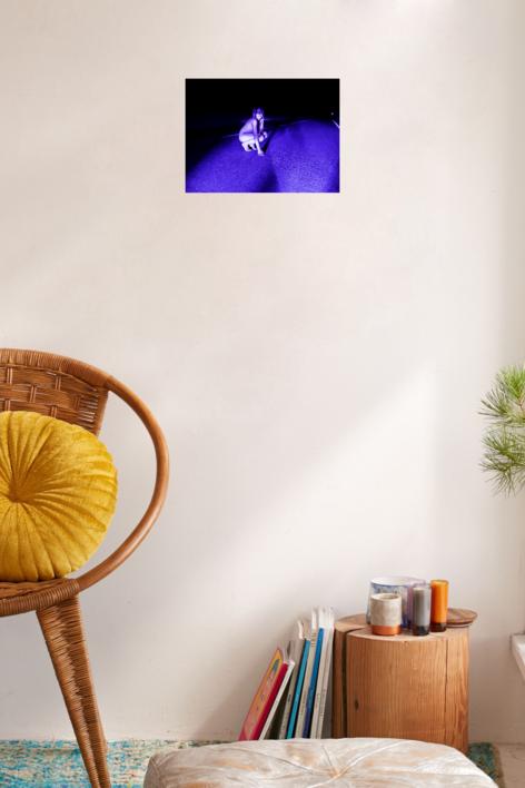 Blue (Moixes)   Digital de Mar Agüera   Compra arte en Flecha.es