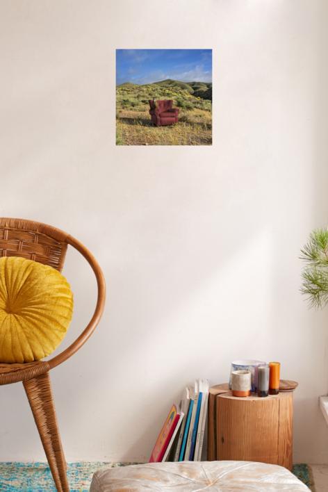 Retrato de una lechuza, primavera en el desierto | Fotografía de Leticia Felgueroso | Compra arte en Flecha.es