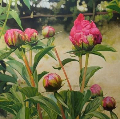 Peonías abriéndose|PinturadeCarmen Varela| Compra arte en Flecha.es
