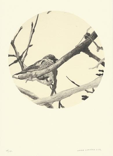 Pájaro en la rama|Obra gráficadeEnrique González (TDP)| Compra arte en Flecha.es