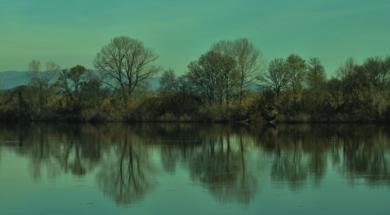 REFLEJOS (de la serie Por el Miño. Foto nº 29)|FotografíadeLuis Arbex| Compra arte en Flecha.es