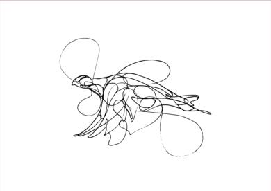 Pájaros I|DibujodeTaquen| Compra arte en Flecha.es