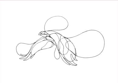 Pájaros IV|DibujodeTaquen| Compra arte en Flecha.es