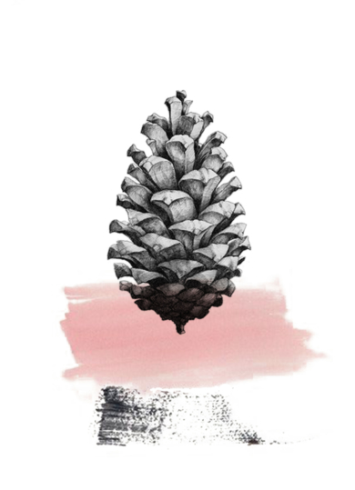 PIÑA|DibujodeCristina F Bonet| Compra arte en Flecha.es