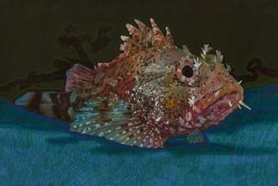 Red Scorpion Fish DibujodeCarlos J. Márquez  Compra arte en Flecha.es