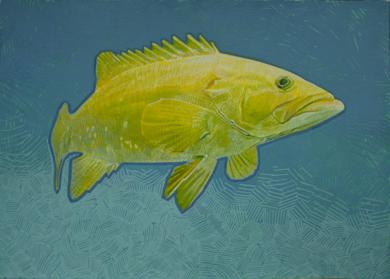 Island Grouper 01 DibujodeCarlos J. Márquez  Compra arte en Flecha.es