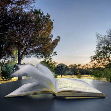 El libro y el viento|FotografíadeLeticia Felgueroso| Compra arte en Flecha.es