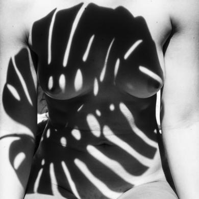 Anatomía natural, salvaje #3|FotografíadeEmilio Jiménez| Compra arte en Flecha.es