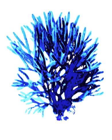 Azure 1|DigitaldeMarta Caldas| Compra arte en Flecha.es