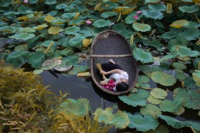 The Lotus Lake VI|FotografíadeViet Ha Tran| Compra arte en Flecha.es
