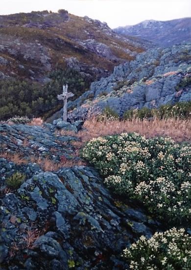 la cruz|PinturadeTomás Guzmán| Compra arte en Flecha.es
