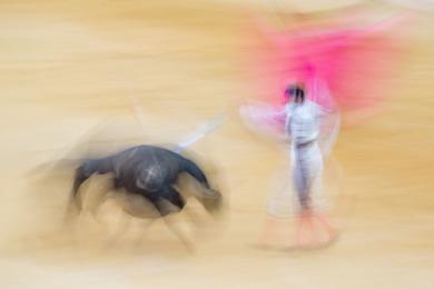 Taurus I|DigitaldeJoan Gil Raga| Compra arte en Flecha.es