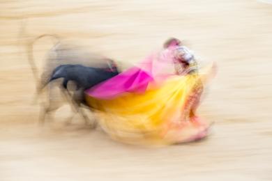 Taurus IV|DigitaldeJoan Gil Raga| Compra arte en Flecha.es