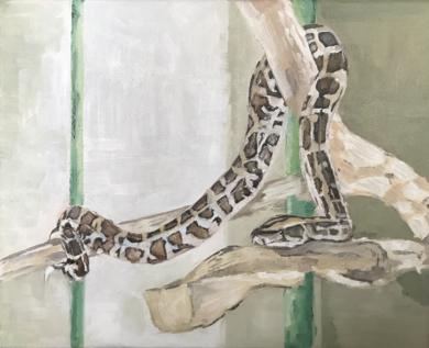 Una serpiente en casa|PinturadeMarta Albarsanz| Compra arte en Flecha.es