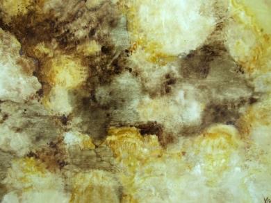 Opus IV|Pinturadexisco| Compra arte en Flecha.es