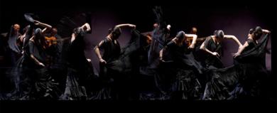 Cuerpo de baile|FotografíadePeter Müller Peter| Compra arte en Flecha.es
