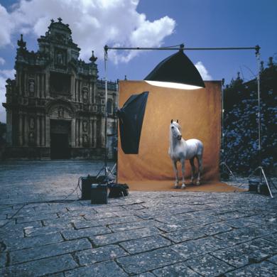 Imafronte barroco de la Iglesia de la Cartuja|FotografíadePeter Müller Peter| Compra arte en Flecha.es