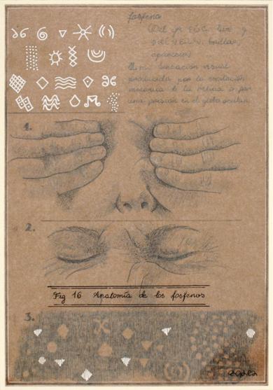 Anatomía de los fosfenos|CollagedeSara González| Compra arte en Flecha.es