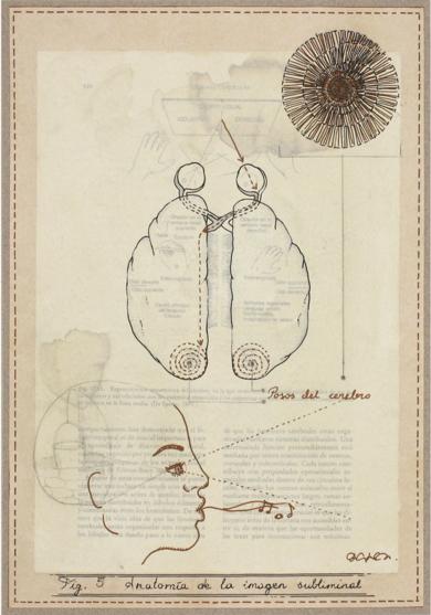 Anatomía de la imagen subliminal|CollagedeSara González| Compra arte en Flecha.es